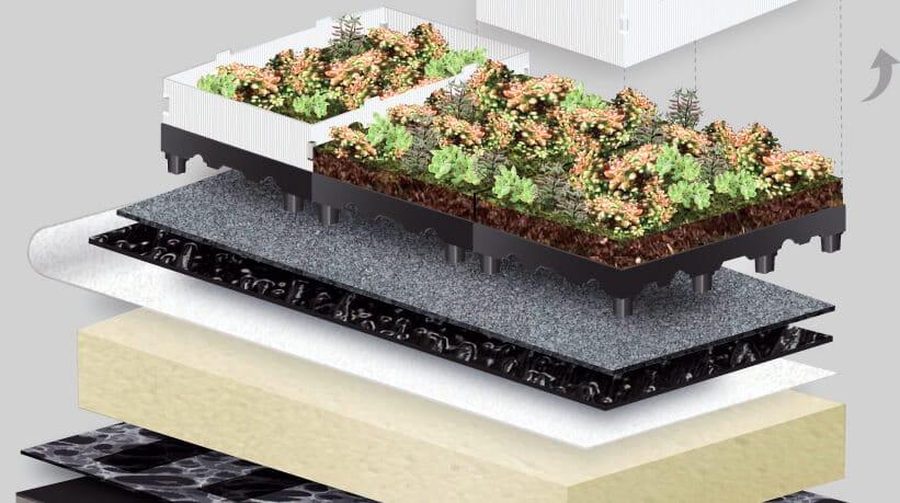 Toundra'Box Flore, partenaire du Concept YRYS